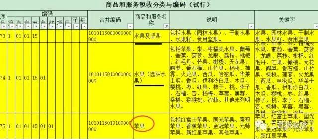 上传1天的发票被税局通知编码开错了,发生了什