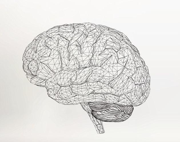 """大脑网眼植入物使""""黑客帝国""""成真:阻止大脑老化图片"""