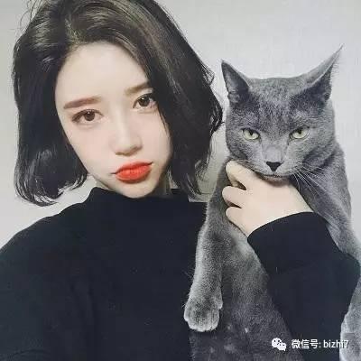 时尚 正文  抱猫头像,2017微信头像女生高清 ps:原版高清无水印版请