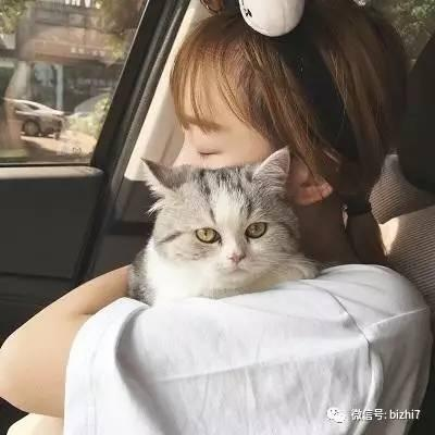 抱猫头像,微信头像女高清