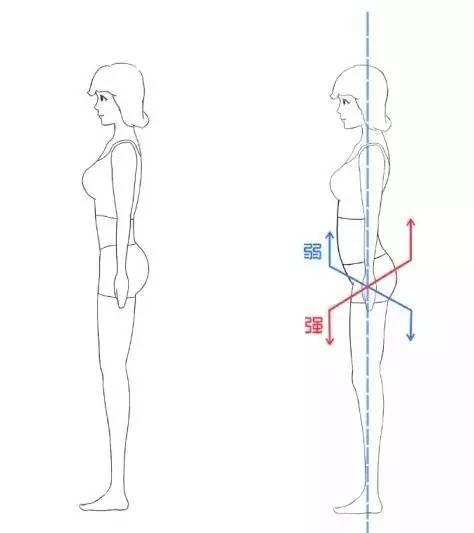 骨盆出口平面手绘图