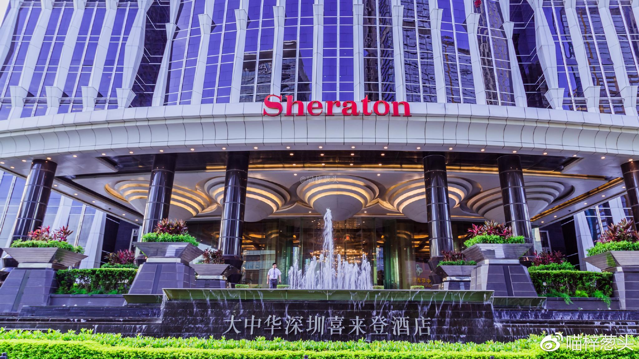 20分钟后,豪华专车停在了深圳大中华喜来登酒店的大门前