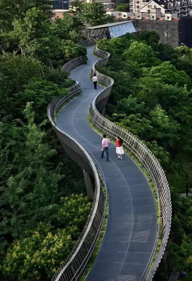 最长的城市森林步道在福州建成!_搜狐社会_搜狐网图片