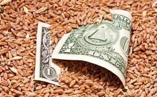 农村金融遍地都是拦路虎,怎么破?