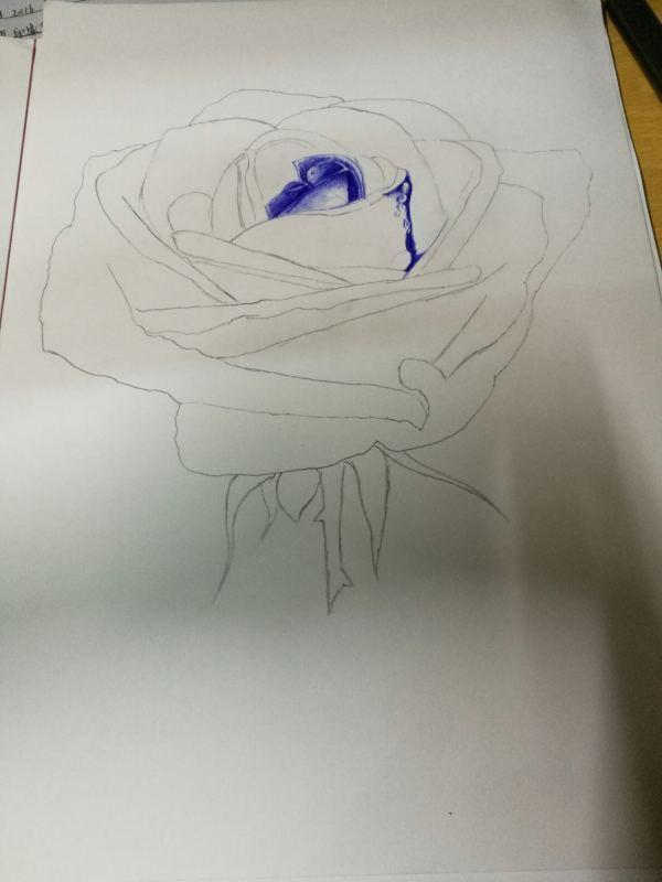 大学生圆珠笔作画入门教程 圆珠笔画技法步骤图图片