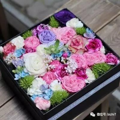 2017微信头像花草,那些花儿