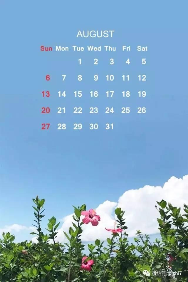 日历壁纸高清,八月,你好