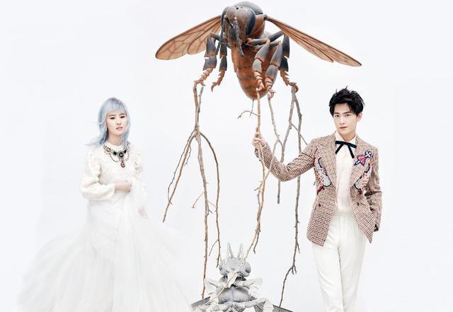 同样和杨洋拍婚纱照,郑爽和刘亦菲谁和杨洋更搭?