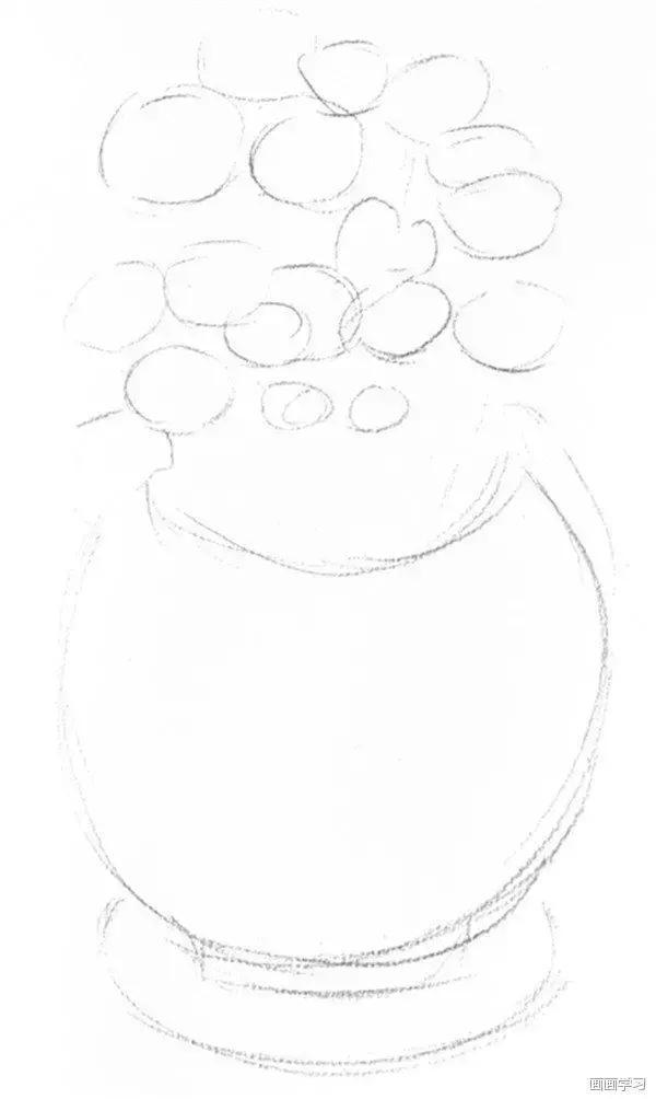 植物素描教程,开心果,橙子,邹菊花素描步骤图解