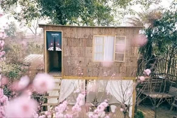 旅游 正文  小院位于成都东南近郊的三圣花乡,被四个年轻女孩改造的