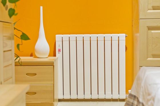 不同风格的暖气片装修效果图片