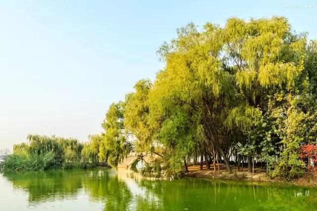 灞桥生态湿地公园游玩全攻略