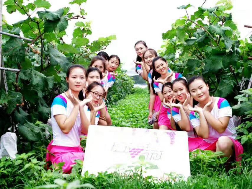 8月1日新陆春天旅游园第一届葡萄采摘节盛大开启