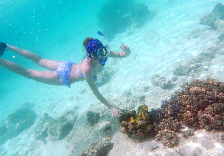 旅游 正文  三角洲岛和珊瑚岛都是潜水的理想之地.