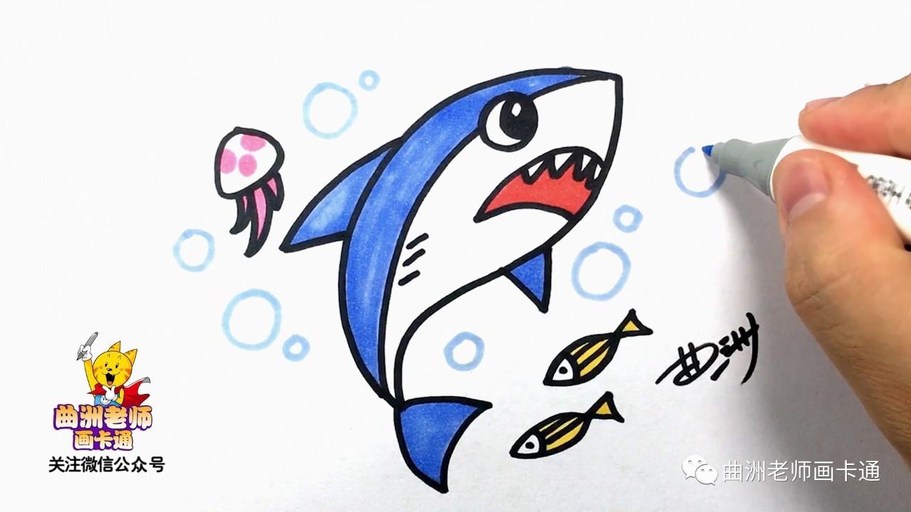少儿简笔画:鲨鱼 | 曲洲老师画卡通