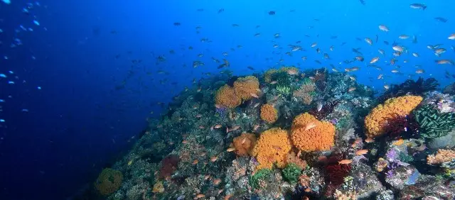 景美免签,火山温泉,巴厘岛人最爱的是他们的邻居