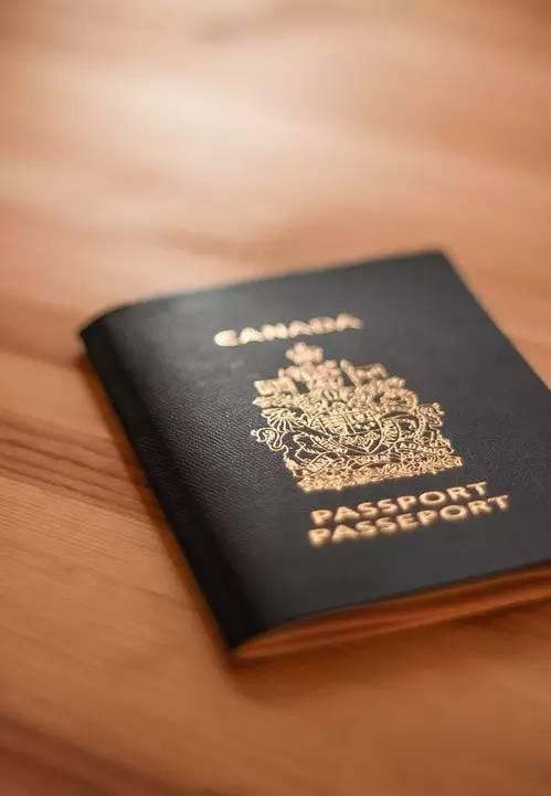 你以为办好签证就能顺利入境外国?错!