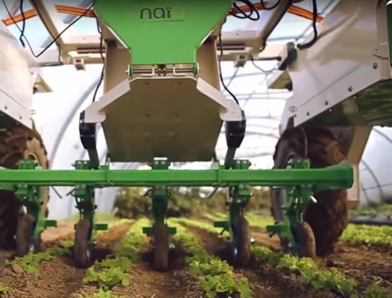 除草机器人问世敲响抗除草剂转基因作物丧钟