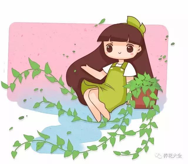前两天花花看了花友们的分享,佩服的五体投地,绿萝文竹都能长到100米.图片