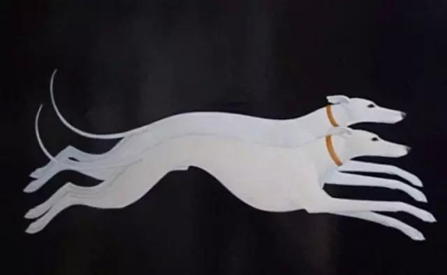 每只动物的形态都被其刻画得非常细腻逼真,特别是眼睛,惟妙惟肖,传神!