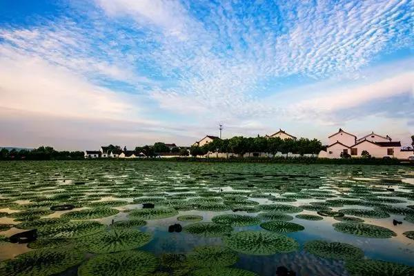 处於太湖风景区中心,优享生态资源,将旖旎风景私藏腹地,尽享滨湖岛居