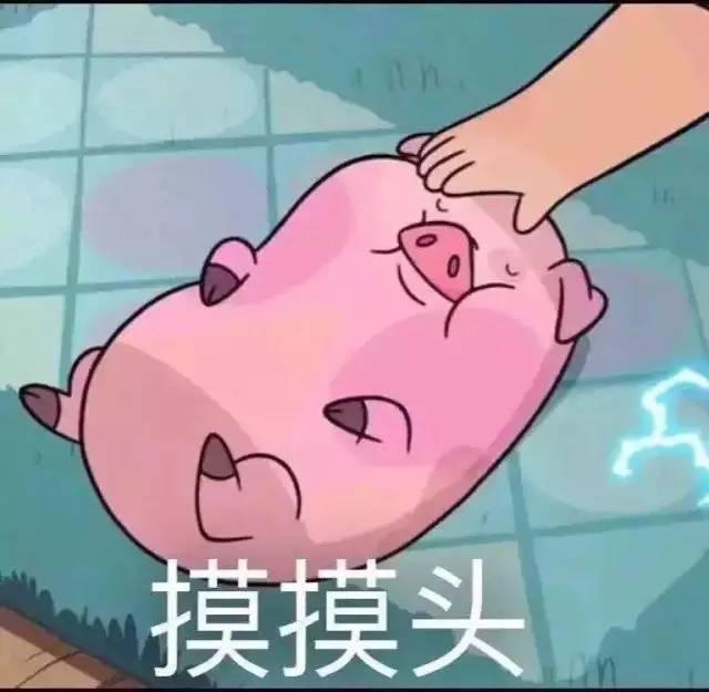 哥哥干掩去撸_看完这片,我要开始撸猪了!
