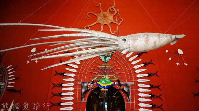 摩纳哥海洋馆惊现美人鱼真身,是你期待的美女吗?