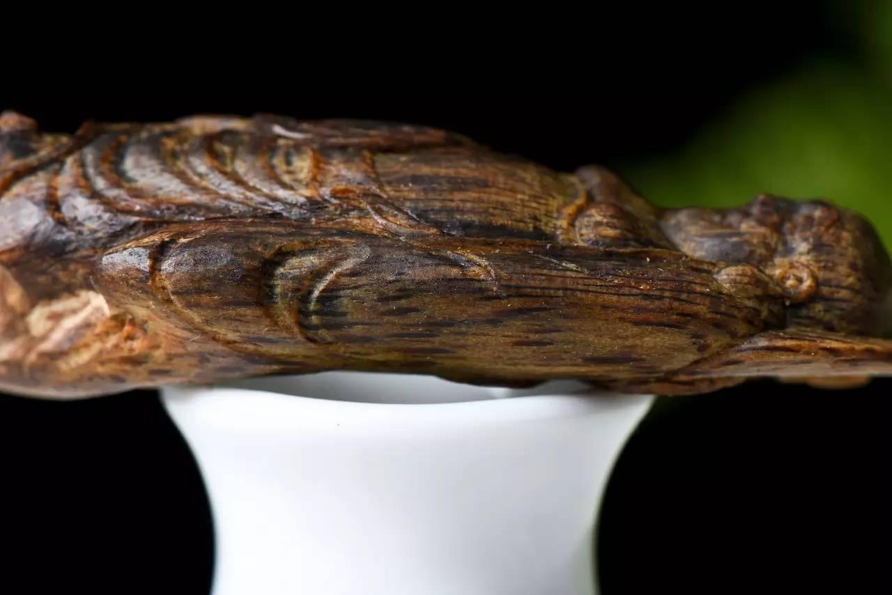 沉香鉴别:世界上最贵的木头,比黄金还贵几十倍