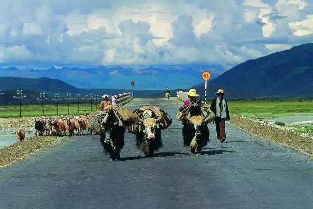 神奇的中国1号天路!读万卷书,不如自驾这条路!-旅游-河北旅游-大头快讯