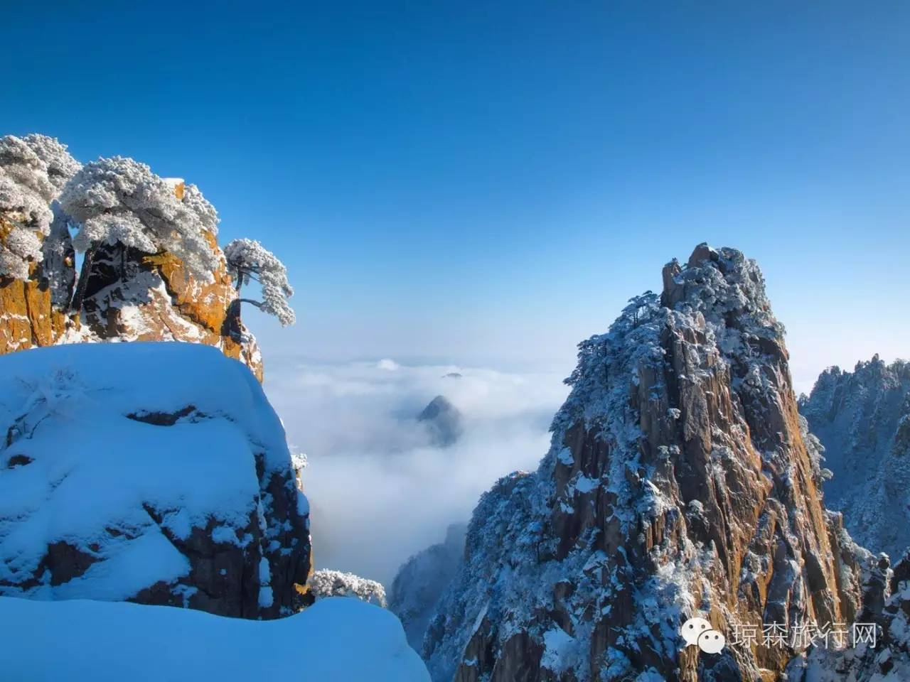 2018年大美黄山冬季联盟专题v联盟攻略三日团(上海出发雪景怪物完美之旅图片
