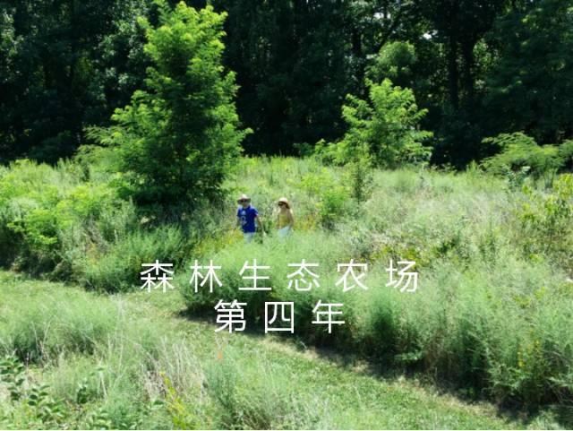 未来生态农场