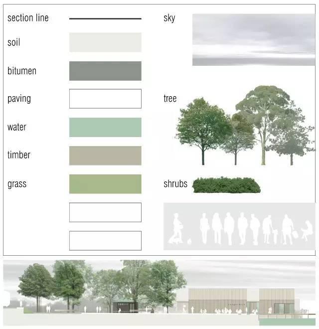 平面植物 【1】立面表现psd文件(12套) 【1】上百棵高清 乔木(常绿与