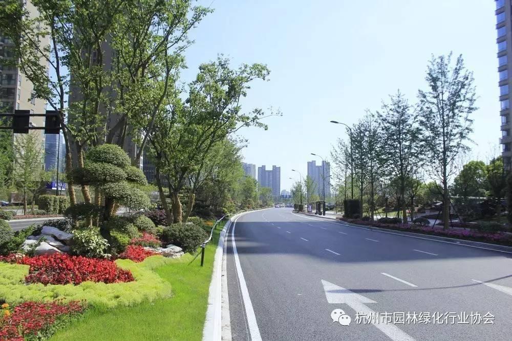 【优秀道路】2016工程杭州市优秀园林绿化年度工程组金x-mind操作方法图片