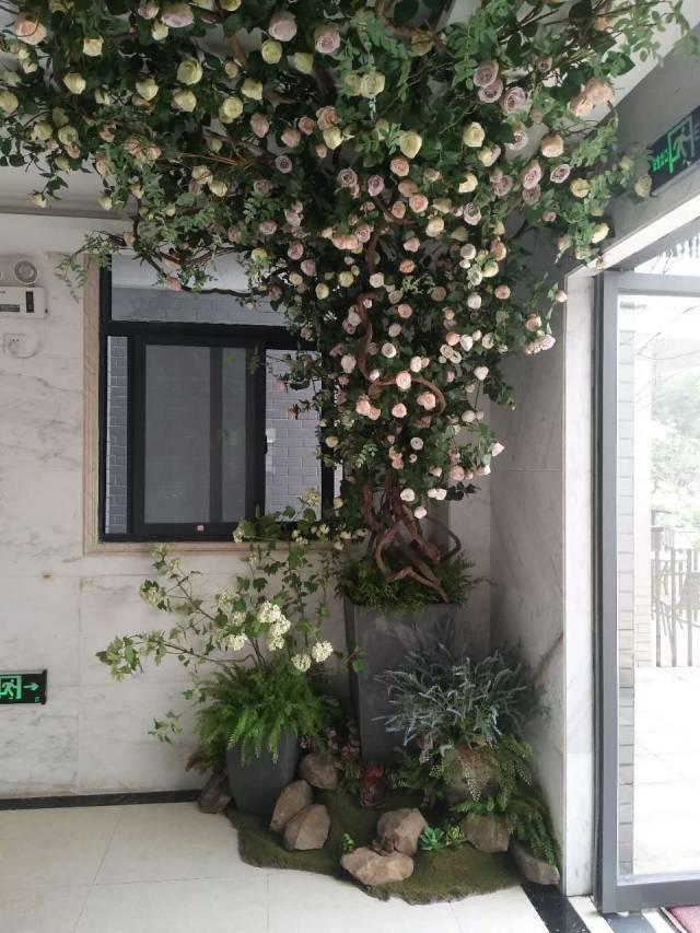 花墙 景观 墙 植物 640_853 竖版 竖屏