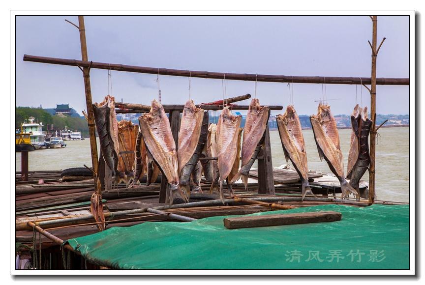 江西赣州之二:国宝级文物——古浮桥