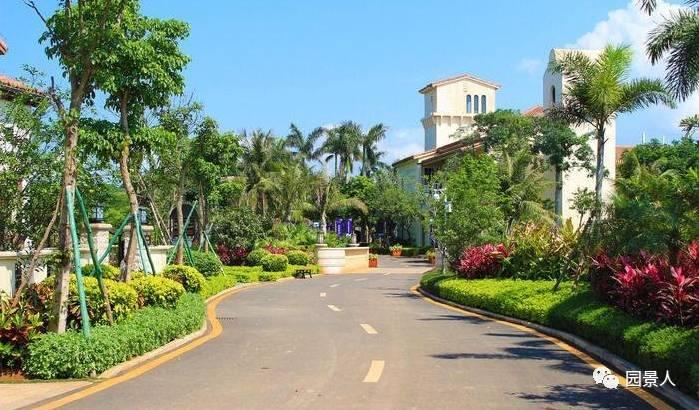城市道路绿化设计规范 · 实用