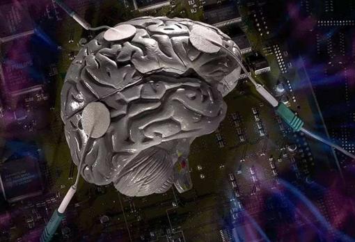 人类大脑在一生中学到的信息需要多少存储空间?