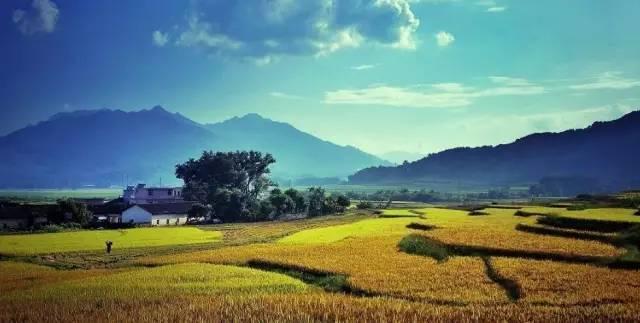 田园综合体规划布局策略研究
