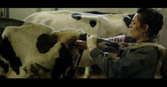 【图解】生吃人肉!重口味限制级电影