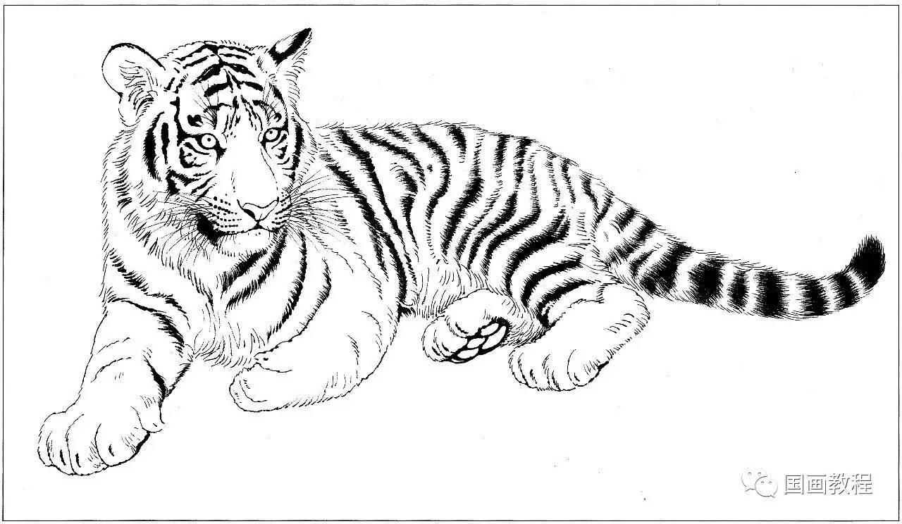 折老虎的步骤图解教程