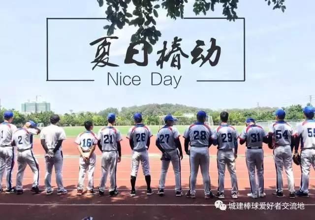 协简介丨棒垒球协宋代斗鸡图片