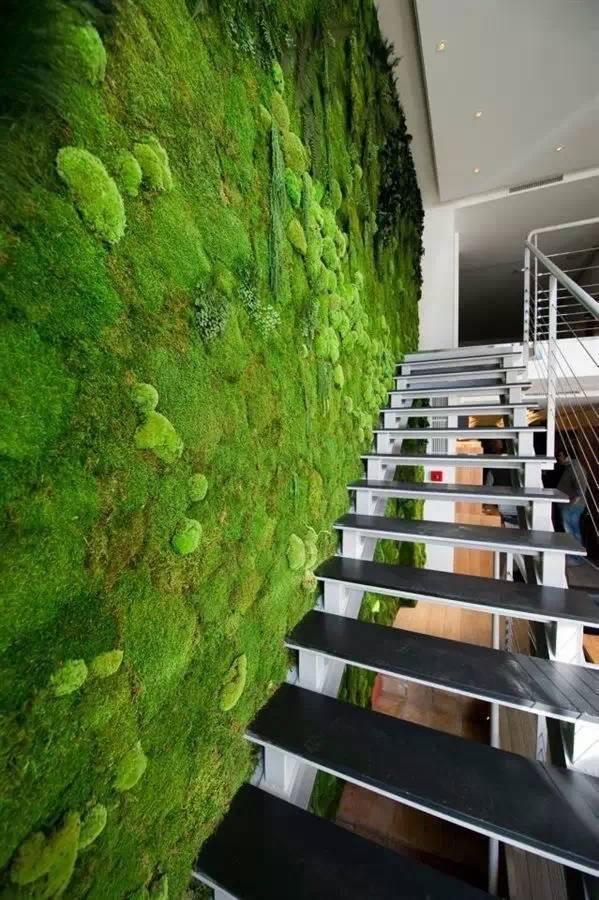 中国室内丨商业空间里的绿植墙设计图片