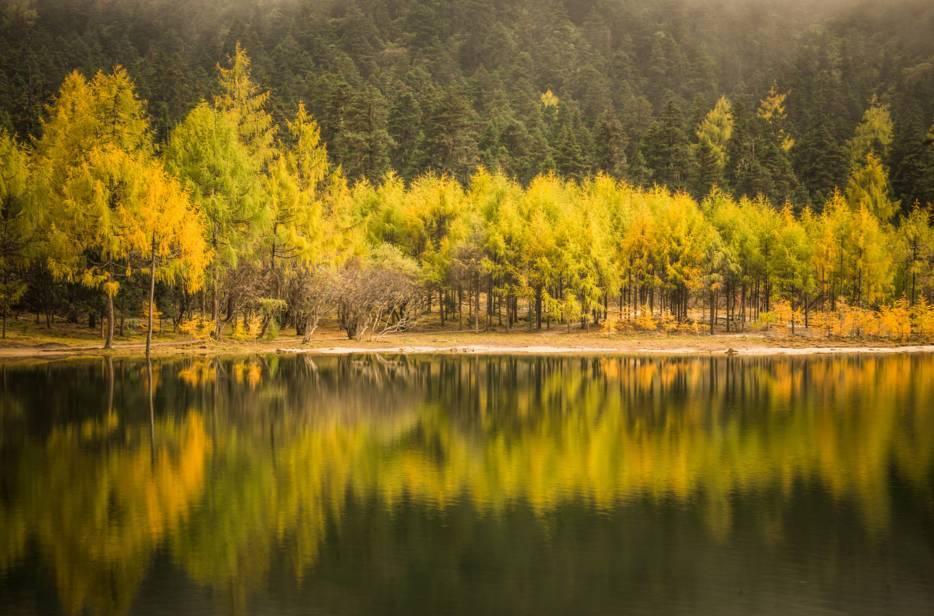 它是中国最大的枫叶风景区,预计是今年秋季踏青的最火爆之地!