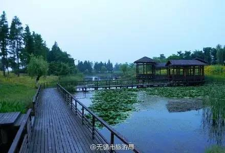 江陰市芙蓉湖濕地公園