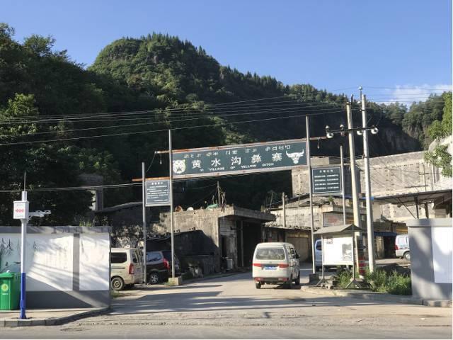 """镇雄西环路惊现中国第一毒蛇""""白头蝰""""!已有人被咬!"""