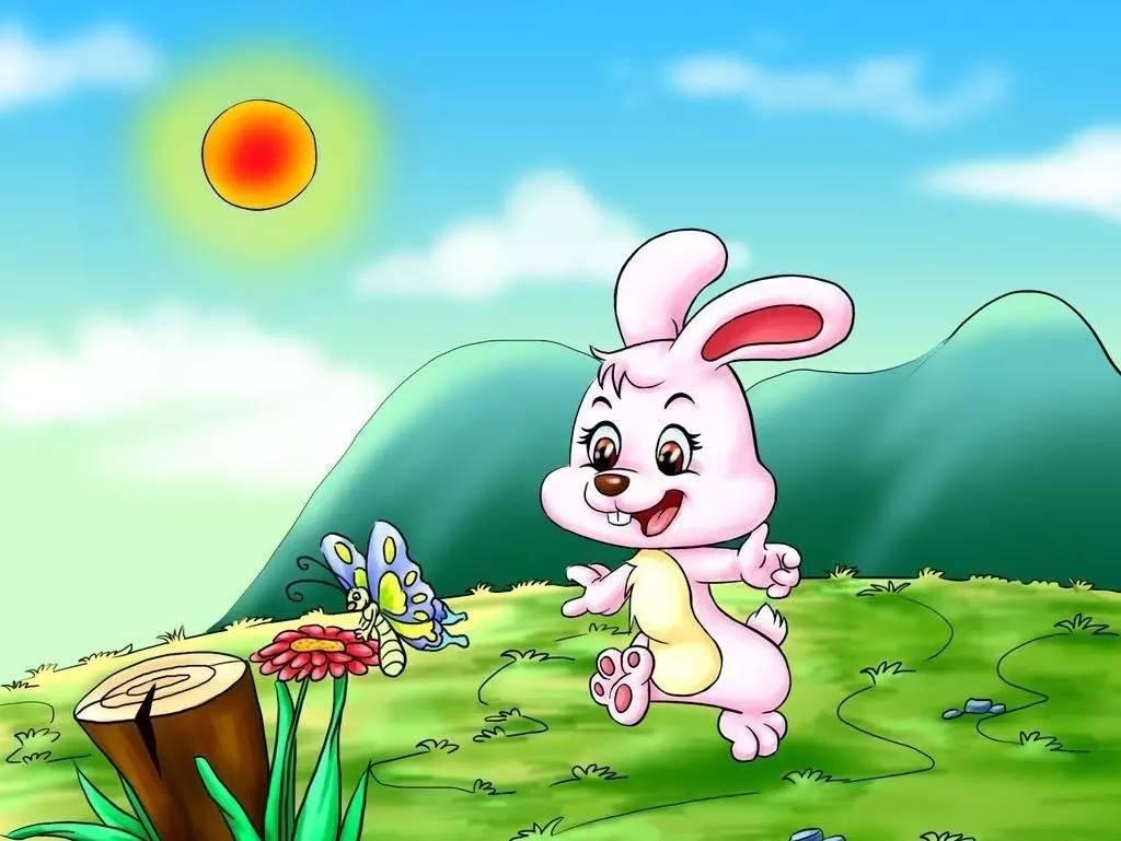怎样另喂养小白兔