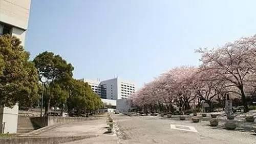 iBS┆【日语】日本留学,如何区分JTEST和JPLT考试
