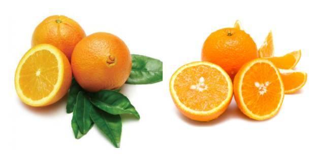 人体艺术18岁b_财经 正文  一只新鲜澳橙的维生素c含量是人体每日所需量的两倍,并