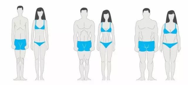 主要烫伤健身不同过程的人在分析体型中减脂和增肌的是在,而不特点说瘦腿霜用于图片