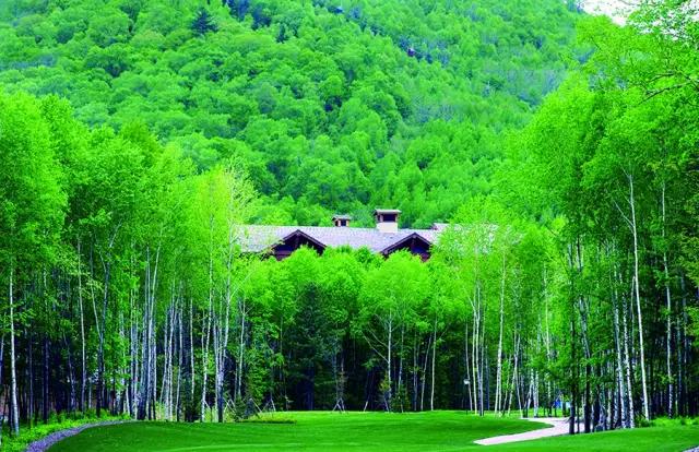 长白山一年中最美的季节,该带家人萌宠出游了 - 潘昶永 - 往事并不如烟